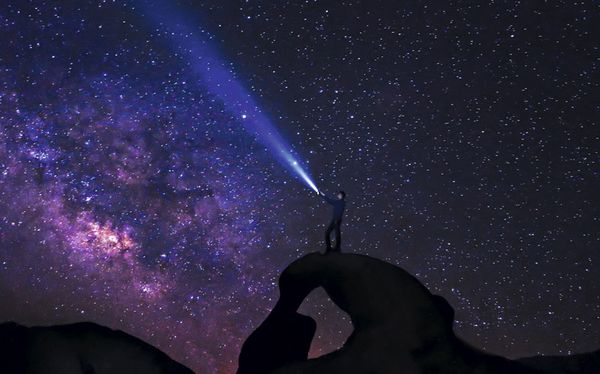 night-star