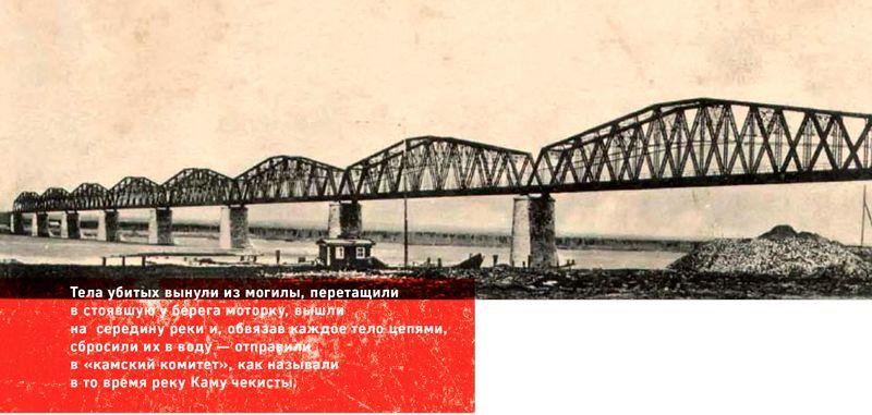 novomuch-2
